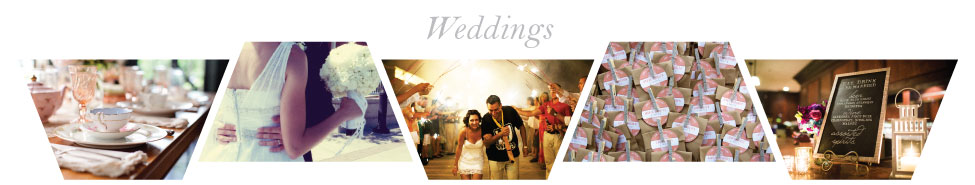 PAD-Website-Headers-Weddings